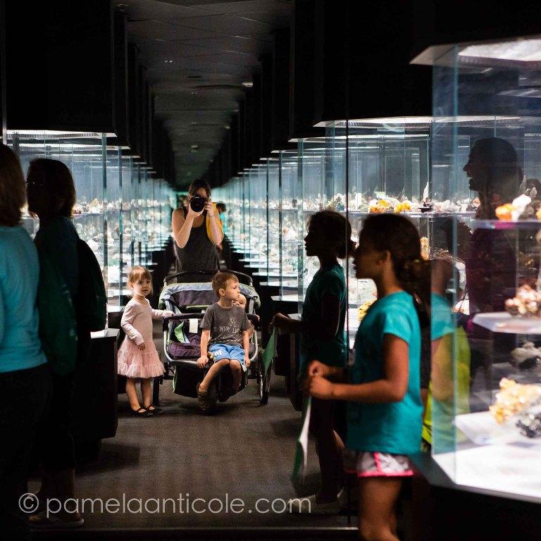 carnegie museum gem exhibit fine art print