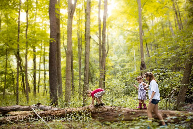kids hike in the woods over a tree