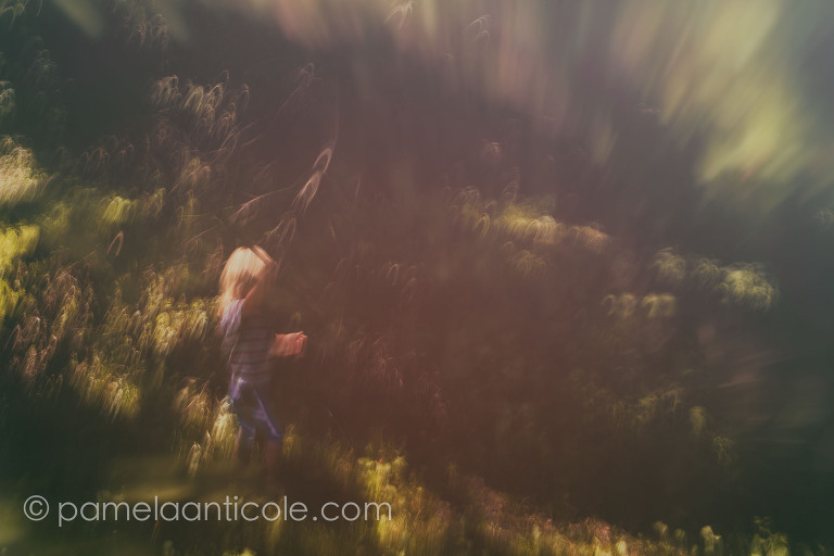 abstract icm fine art print pittsburgh boy marching in nature woods abstract
