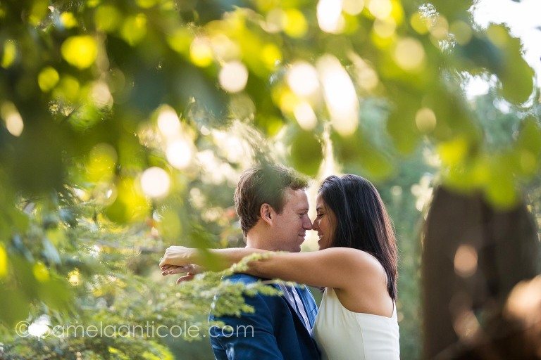 bride and groom noses together, Nicole Donatelli, Rob Dolan, Frick Park engagement photos, natural relaxed engagement photos, documentary wedding photographer in pittsburgh, experienced pittsburgh wedding photographer