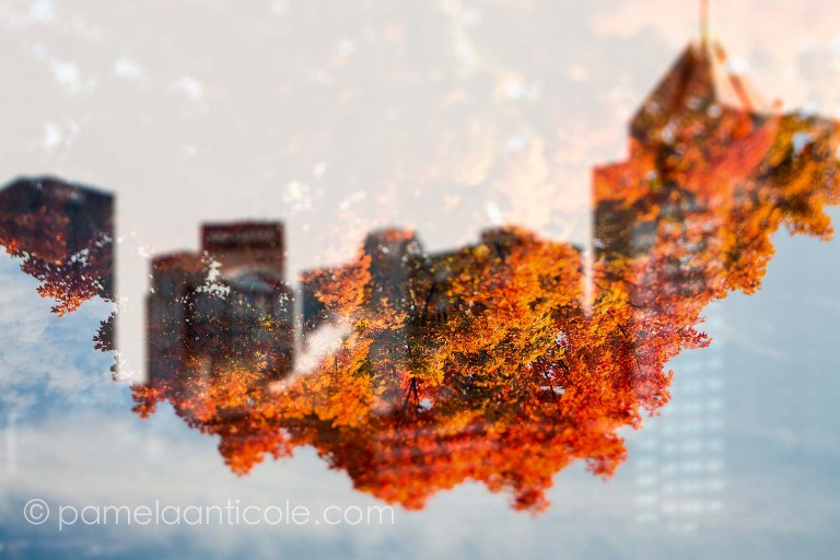 pittsburgh cityscape over autumn fall foliage colors, red, orange, yellow, cityscape, icm, controlled long exposure, pittsburgh, double exposure