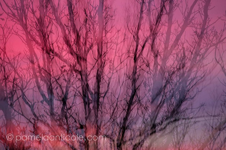 pittsburgh original art, wall print, unique nature art, colorful, pink and purple sunset art