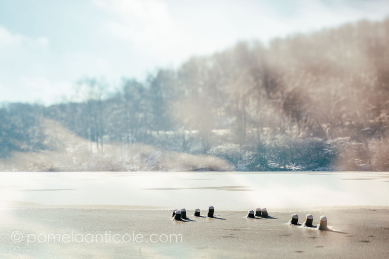 pittsburgh original art, nature art print, icy photography