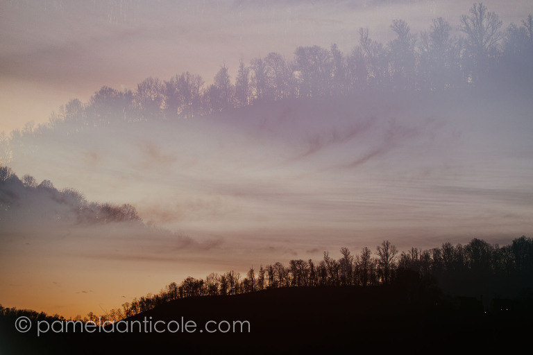 creative sunset photography, pamela marie photography, abstract nature art, creative gifts for nature lovers