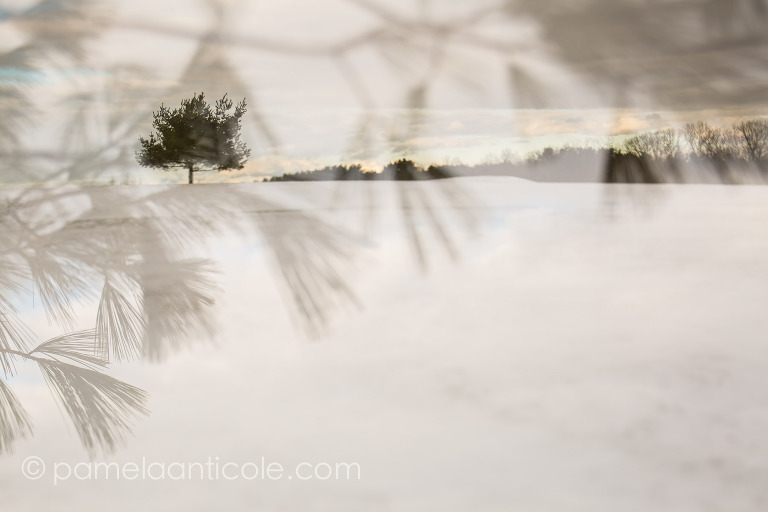 creative nature art, abstract nature photography, original pittsburgh art, winter photography, snow