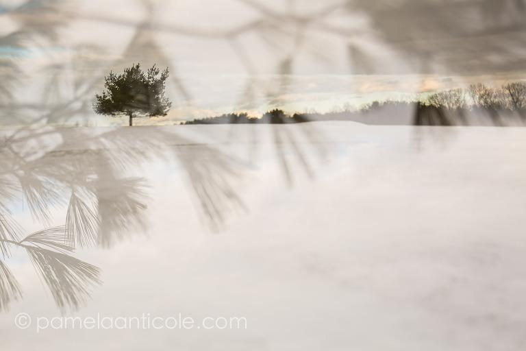 creative nature art, abstract nature photography, original pittsburgh art, winter photography, snow