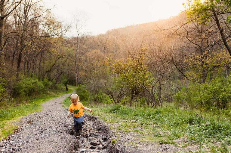 little boy in yellow shirt and sweatpants, carefully walking through the tire ruts in a dirt road, leading through a path in the woods