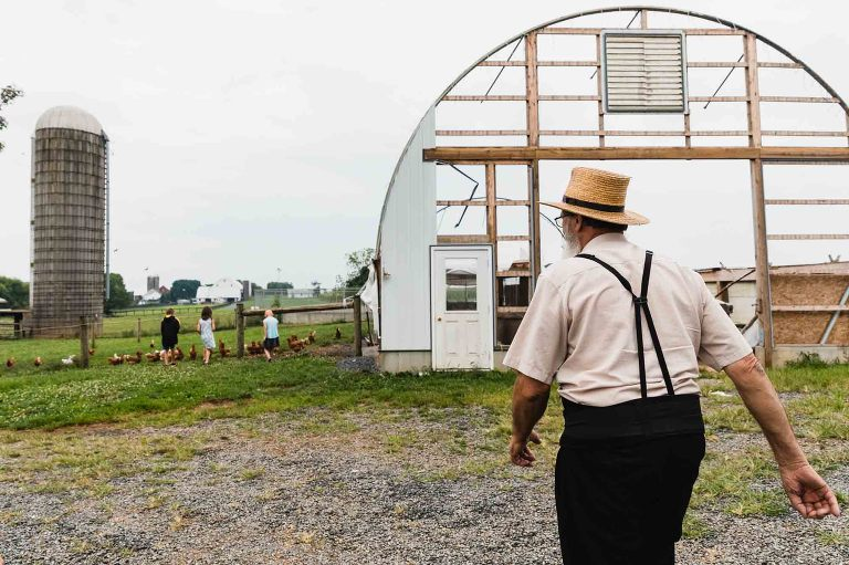 amish man in hat walks toward kids playing with chickens on a farm in lancaster, pa