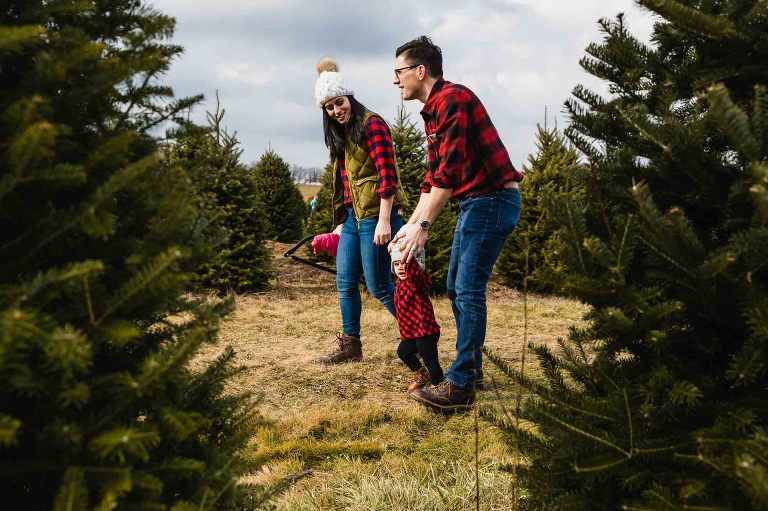 family holds hands and walks through the tree farm, photographed through two christmas trees