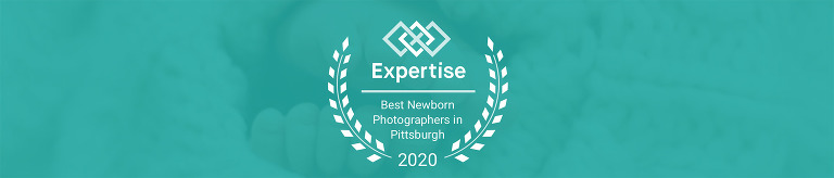 the best newborn photographers in pittsburgh, by expertise.com