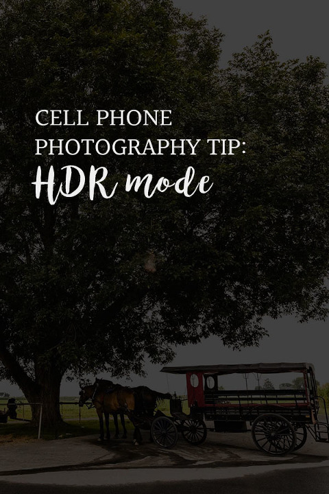 What is HDR mode? text overlay on photo of amish buggy, horse, and tree in front of a bright sky